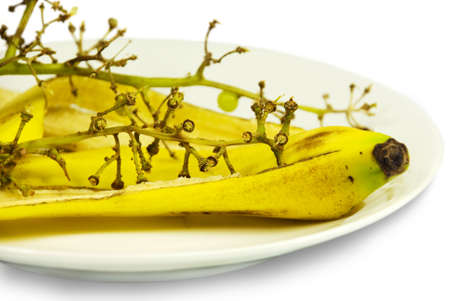 Scraps on a white plate: a peel of a banana and grapes branch photo