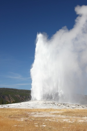 yellowstone: The geyser known as Old Faithful regularly erupts in Yellowstone National Park USA
