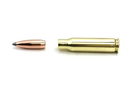fusil de chasse: balle et la cartouche sur blanc Banque d'images