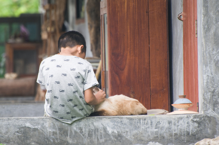 children at play: children sitting on a balcony and play with  cat.