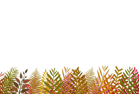 Colorful leaf frame pattern on bottom isolated on white vector illustration Illustration