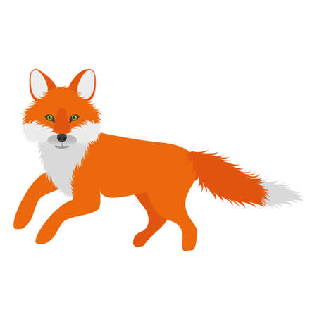 cartoon orange fox Vector