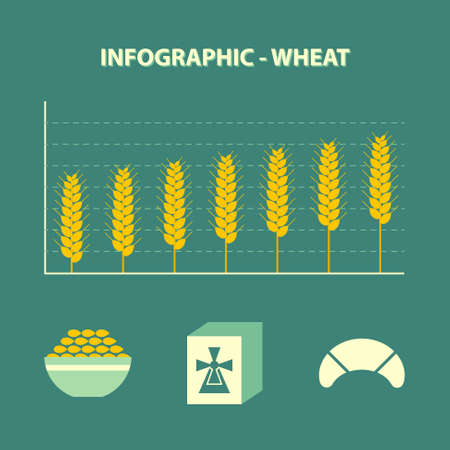 gristmill: infographic with graph of increase wheat and bakery icons in flat design