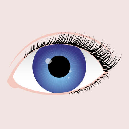 realistic eye with blue iris, black algae and reflection on pupil