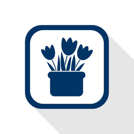 원예: square blue icon tulips in pot with long shadow - symbol of horticulture, gardening, flowers, florist and spring season