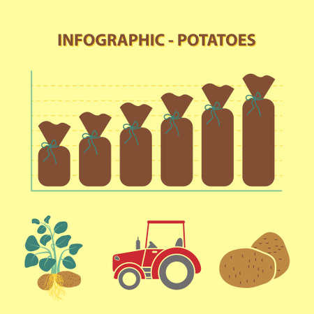potato plant: infographic with graph of production growth of potatoes and agricultural icons - plant, tractor, potato