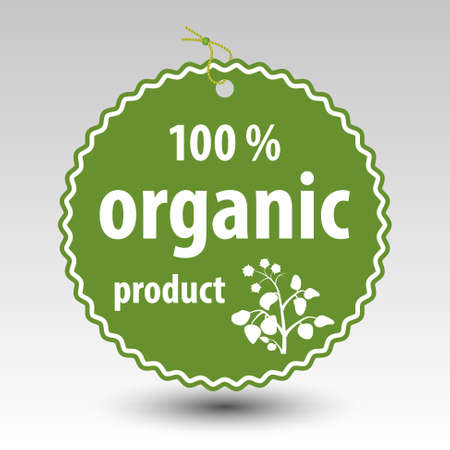 vector green 100 % organic product paper price tag label with string eyelet with plant