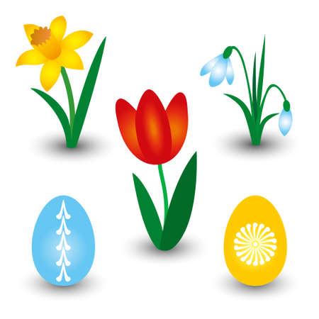 Vector set of three spring flowers and two Easter eggs with pattern - red tulip, yellow daffodil and white snowdrop.