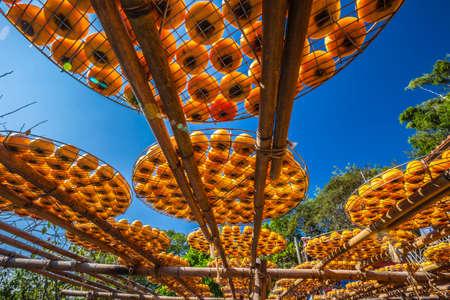 Persimmon cake in the sun bath. Stock Photo
