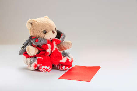 Teddy bear wish you happy chinese new year.