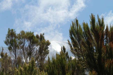 kilimanjaro: Kilimanjaro mountains