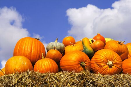 pumpkins on bales of straw (hay)