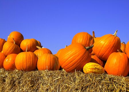 pumpkins on bales of straw (hay)