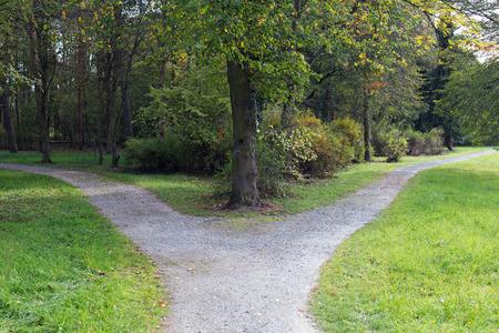 Rechts of links Een vork in de weg in een bos Stockfoto