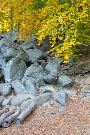 attraction: Felsenmeer, tourist attraction in Odenwald, Hesse, Germany
