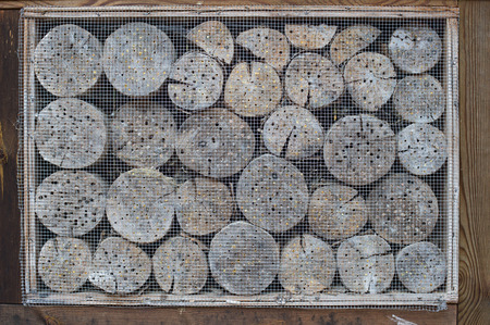 wire mesh: Insect hotel with wooden border and wire mesh