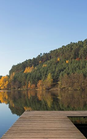 boat dock: Lake with boat dock in the autumn