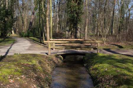 brook: Small wooden bridge over a small brook in a forest