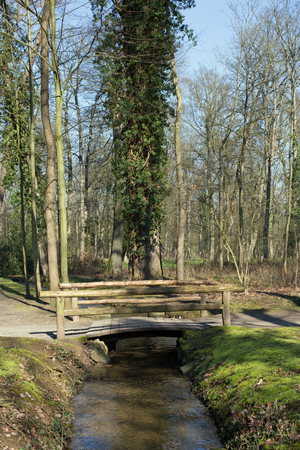 path to romance: Small wooden bridge over a small brook in a forest