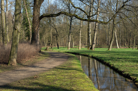 path to romance: A path and a small brook in a forest