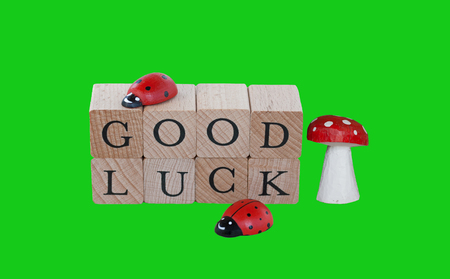 lucky charm: The words good luck, wooden lucky charm and ladybugs, isolated on green
