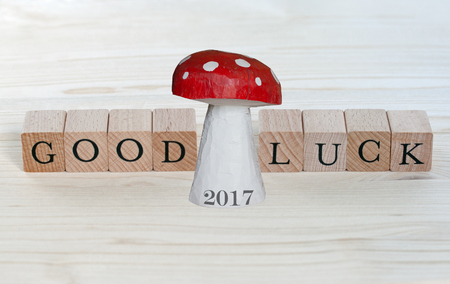 lucky charm: The words Good Luck and a lucky charm with the year 2017 on wood