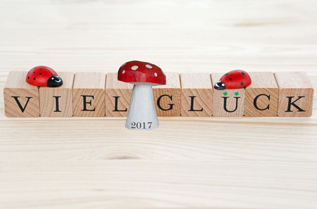 lucky charm: The german words for good luck (Viel Gl�ck) and a lucky charm with the year 2017 on wood