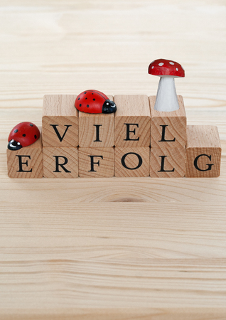 beggar: The german words for a lot of success (Viel Erfolg) and ladybugs and lucky beggar on wood