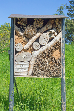Insect hotel on a meadow, blue cloudless sky Stock Photo