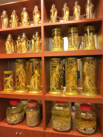 Korean Ginseng Stock Photo