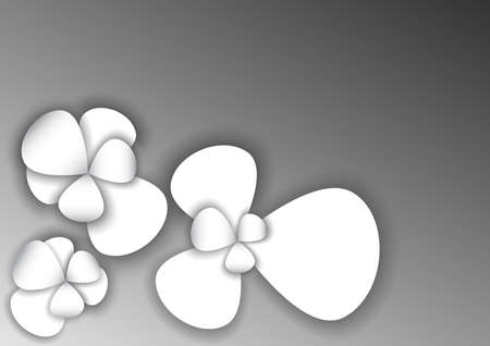 white flower cover background Ilustrace