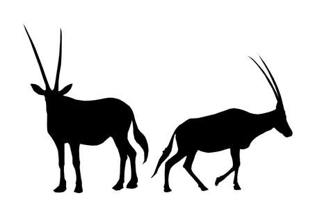 arabian oryx black silhouette design animal elements
