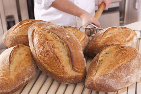 Fresh baked bread, collected with a shovel by Baker Stock Photo