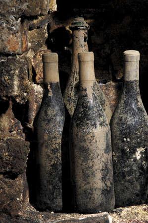 Viejas botellas en una bodega, cubierta de polvo y telara�as Foto de archivo - 12961580