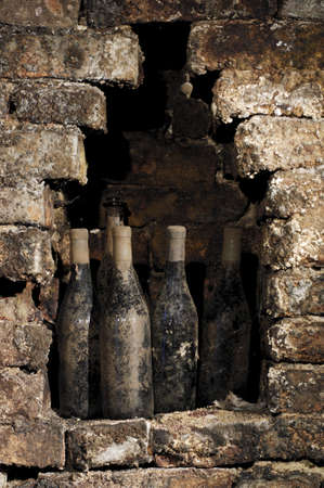 Old bottles in a cellar, covered with dust and cobwebs photo