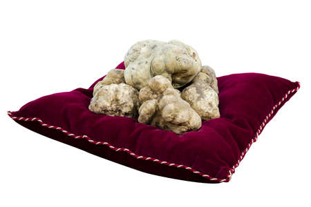 White truffles on red cushion isolated on white