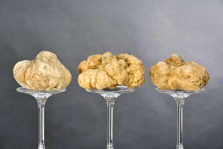 truffe blanche: Nature morte d'une truffe placée sur le piédestal en verre sur fond noir