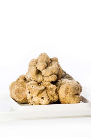 truffe blanche: Beaucoup de truffes blanches du Piémont sur plaque de céramique placés sur un fond blanc Banque d'images