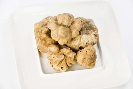 white truffle: Many white truffles from Piedmont on ceramic plate placed on a white background Stock Photo