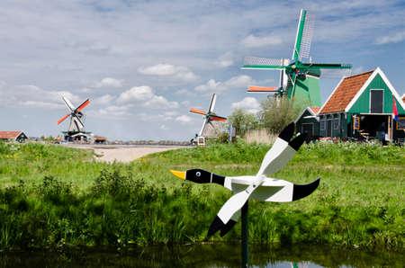 wind vane: Wood Duck vane before the windmills at Zaanse Schans, Amsterdam, Holland