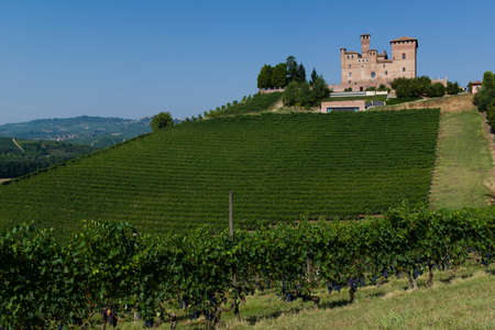 cavour: Grinzane Cavour, Italy - August 11, 2015: Summer view of the Castle of Grinzane Cavour Unesco heritage in the territory of the Langhe Piedmont Italy