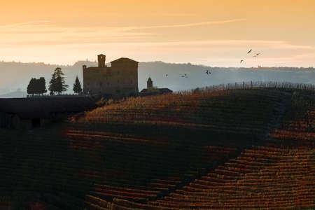 vineyard: Grinzane Cavour, Italy - October 23, 2014: View the sunset over the hills of the Castle of Grinzane Cavour Unesco heritage in the territory of the Langhe Piedmont Italy, migratory birds flying in the sky Editorial