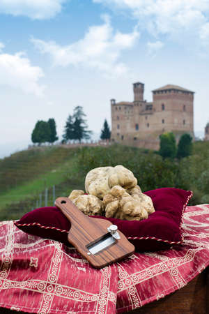 cavour: Grinzane Cavour, Italy - October 25, 2014: Still Life the White Truffles from Piedmont and size truffles, with views over the vineyards and the castle of Grinzane Cavour