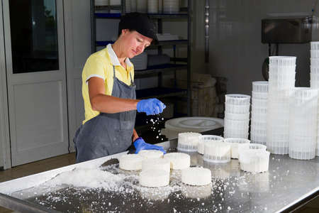 food plant: Woman is putting same salt on the pieces of cheese for the maturing Stock Photo