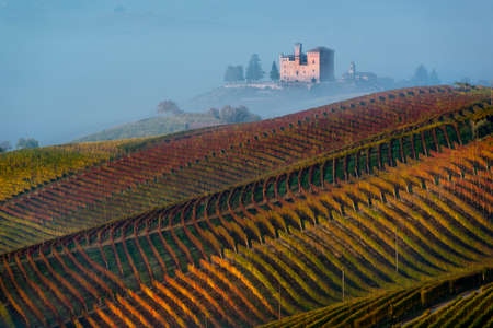 Grinzane Cavour, Italy - October 30, 2016: Autumn Vineyards on the hills, at the bottom the Castle of Grinzane Cavour wrapped in fog