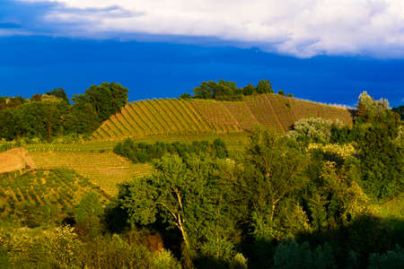View of the vineyards and hills of Roero Piedmont Italy during a thunderstorm, suggestive contrast between dark skies and vineyards illuminated by the afternoon sun
