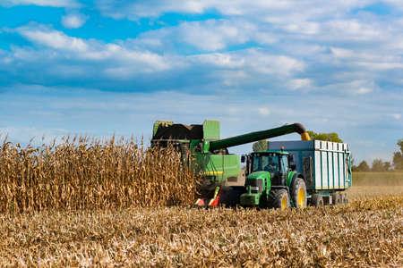 Piemont, Włochy, 13 września 2017: Kombajn zbożowy do kukurydzy i pobierz go w przyczepie ciągniętej przez traktor, na sugestywnym polu jest błękitne niebo chmury