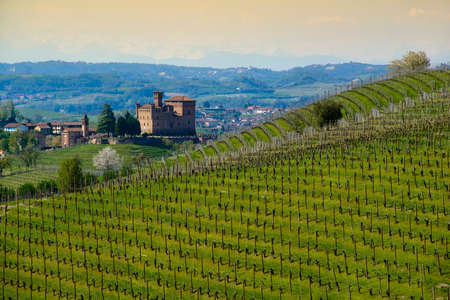 Spring view of the Castle in the territory of the Langhe Piedmont Italy