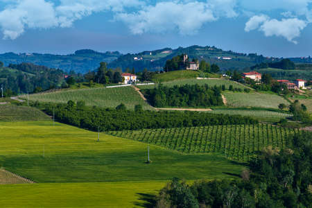Vineyards and woods on the Pianezzo hillside situated in the Municipality of Dogliani Piedmont Italy, on the hills buildings and chies, the blue and cloudy sky Banco de Imagens - 127788514