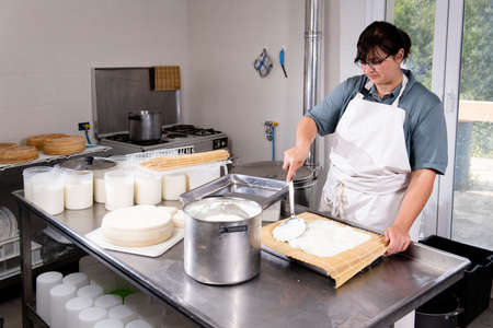 Cheesemaker puts fresh cheese on the rush for a typical process 写真素材